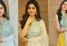 Nabha Natesh Stills From Nannu Dochukunduvate Movie Pre Release Event Photos