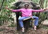 BellamkondaSreenivas Pic With Elephant