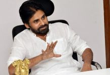 Pawan Comments On AP Leaders