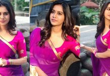 Nabha Natesh In Half Saree Photos