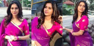Nabha Natesh In Half Saree Photos