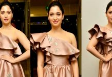 Tamannaah Bhatia Stills From F2 Movie Pre Release Press Meet Images