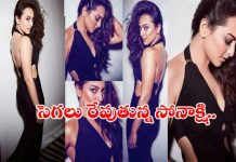 Bollywood Actress Sonakshi Sinha Latest Images 2019