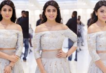 Shriya Saran Latest Glam Photoshoot Images