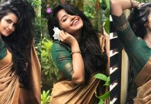 Anupama Parameswaran Looking Beautiful In Saree Photos