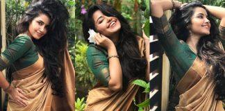 Anupama Parameswaran Looking Beautiful In Saree Photos