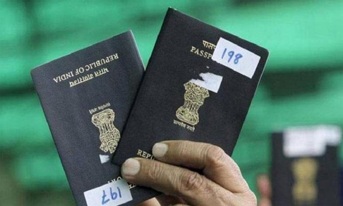 72% Indians received H1-B visas in last 5 years | klapboardpost